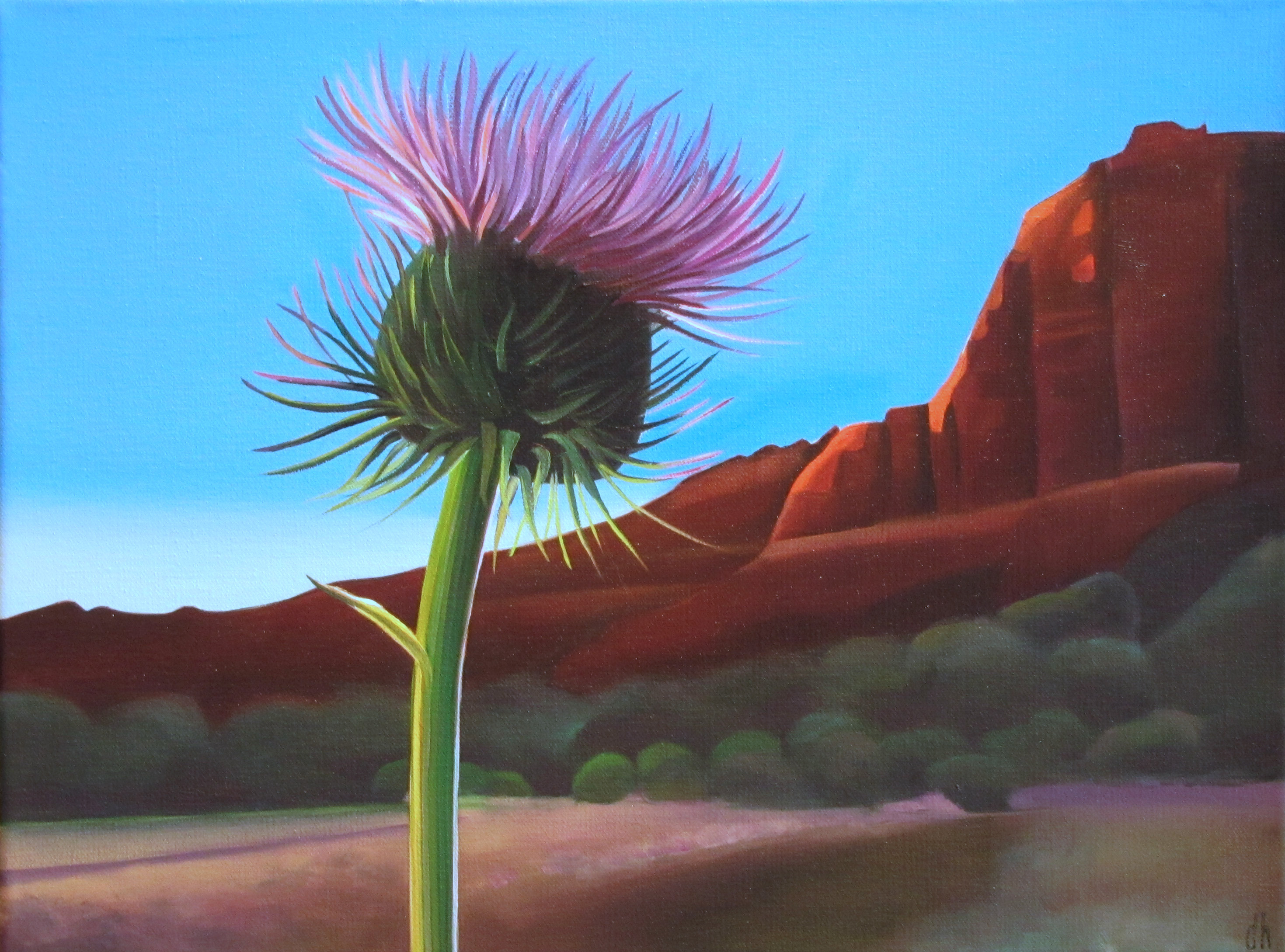 "Dyana Hesson - ""Looking Forward - Thistle at Sunset, Sedona"""