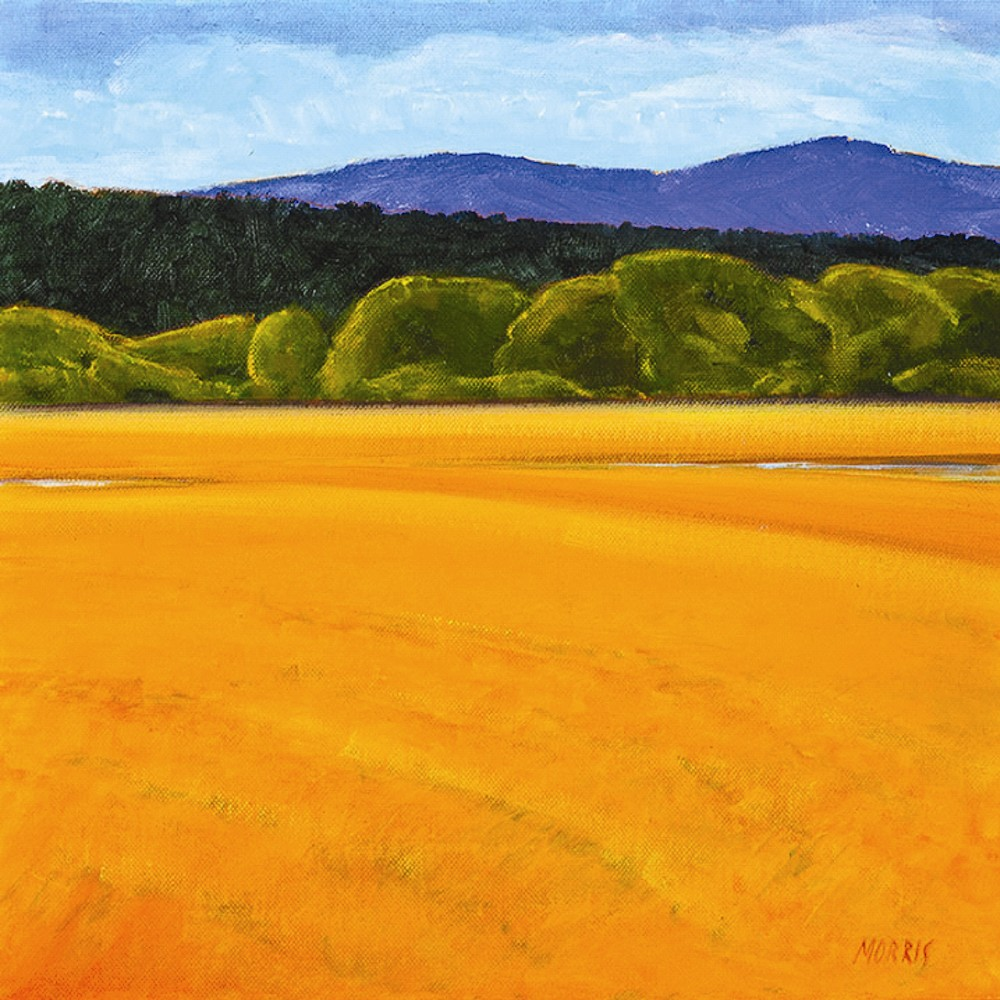 "Gail Morris - ""Distant Mountain"""